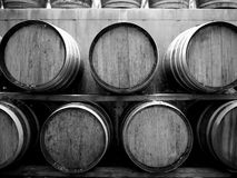 Vineyard: wine barrels h stock image