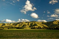 Vineyard, winery New Zealand, typical Marlborough landscape with vineyards and roads, hills and mountains royalty free stock photography