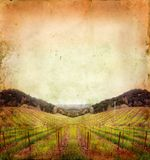 Vineyard in Winter on a Grunge Background royalty free stock photos