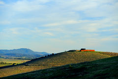 Vineyard in Yarra Valley and wine cellar on hill top Stock Images