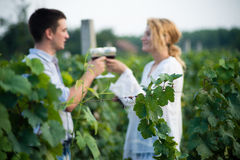 Vineyard. Young happy couple holding a glass of wine and looking at camera in the grape fields Royalty Free Stock Photo