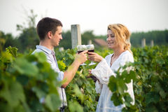 Vineyard. Young happy couple holding a glass of wine and looking at camera in the grape fields Royalty Free Stock Images