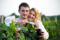 Vineyard. Young happy couple holding a glass of wine and looking at camera in the grape fields Royalty Free Stock Image