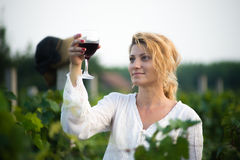 Vineyard. Young happy woman holding a glass of wine and looking at camera in the grape fields Stock Photography