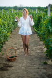 Vineyard. A young woman holds in hand a glass of wine Stock Images