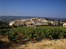 Vineyards. Provecale vineyards provence france french wine growing stock images