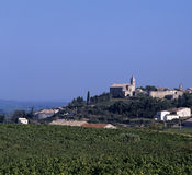 Vineyards. Provecale vineyards provence france french wine growing stock image