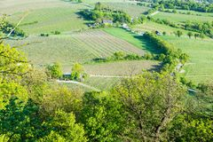 Vineyards aerial view. Aerial view of vineyards near Vienna, Austria Royalty Free Stock Images