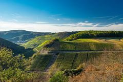 The vineyards of Ahrtal in Ahrweiler. In autumn stock photos