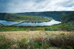 Vineyards along the mosel Stock Photos