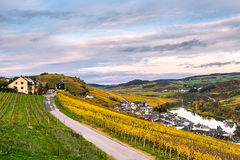 Vineyards along River Moselle in Luxembourg. The vineyards in autmn colors along the River Moselle in Luxembourg Stock Images
