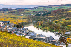 Vineyards along River Moselle in Luxembourg. The vineyards in autmn colors along the River Moselle in Luxembourg royalty free stock photos