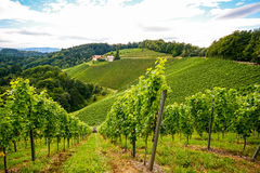 Vineyards along the South Styrian Wine Road in autumn, Austria Royalty Free Stock Photos