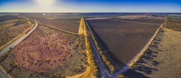 Vineyards of Banrock Station in Riverland. Royalty Free Stock Images