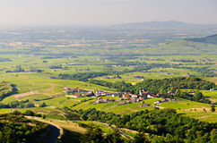 Vineyards of Beaujolais, Rhone, France Stock Photography