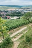 Vineyards of Burgundy, Chablis. View of the city of Chablis, wine region in central France northern Burgundy stock image