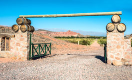Vineyards in Cafayate, Argentina Stock Photo