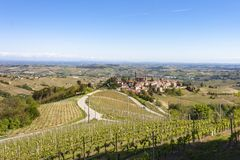 The vineyards of Castiglione Tinella, Piedmont. The splendid vineyards of Castiglione Tinella, in the province of Cuneo in the Italian region of Piedmont stock images