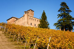 Vineyards and castle of Grinzane Cavour in Piedmont Italy Stock Images