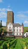 Vineyards and castle Rudesheim Royalty Free Stock Photos
