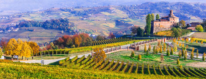 Vineyards and castles of Piemonte in autumn colors. Italy. Impressive multicolored vineyards and oldcastle,Piemonte,Italy stock photo