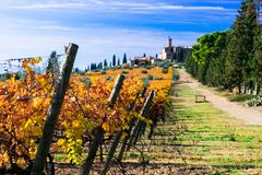 Vineyards and castles of Tuscany in autumn colors. Castello Banfi il borgo. Italy royalty free stock image