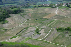 Vineyards of Chateau-chalon in France Stock Images