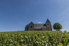 Vineyards with Chavot Church. The church of Chavot with the vineyards in the Champagne district on a summers day, France Stock Photography
