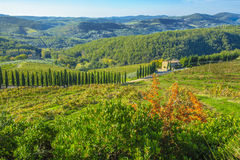 Vineyards in Chianti Tuscany Stock Photography