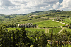 Vineyards of Chianti in Tuscany Royalty Free Stock Image
