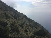 Vineyards in Cinque Terre. Scenery about vineyards in Cinque Terre at the trail between Vernazza and Corniglia stock photography