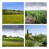 Vineyards and countryside Royalty Free Stock Image