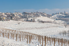 Vineyards covered with snow in Italy. Stock Photography