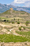 Vineyards and Davalillo castle, La Rioja Royalty Free Stock Images