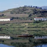 Vineyards of the Douro Valley Stock Photo