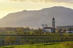 Vineyards in early spring. Rural landscape with vineyards and church, early spring evening Stock Photos