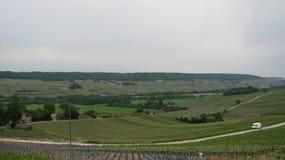 Vineyards of Eperna Stock Photos