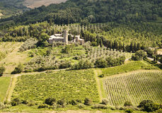 Vineyards and Estate In Umbria Stock Image