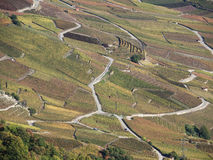 Vineyards. In fall colours in the canton of Valais, Switzerland stock photo