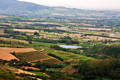 Vineyards in fertile valley. Aerial view of lush vineyards for wine making in western cape Wellington and Paarl in South Africa royalty free stock photography