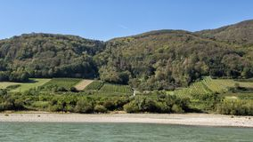 Vineyards and fields from the Danube River in Wachau Valley, Lower Austria. Pictured are vineyards and fields from the Danube River in Wachau Valley, Lower stock image
