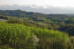 Vineyards and fields of Italy`s Piemonte wine region. stock photos