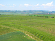 Vineyards and fields in South Moravia Royalty Free Stock Photos