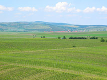 Vineyards and fields in South Moravia Royalty Free Stock Photo