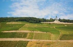 Vineyards and Germania monument in Rudesheim. Vineyards and Germania monument near Rudesheim am Rhein Royalty Free Stock Photo