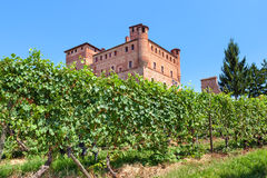 Vineyards of Grinzane Cavour in Italy. Royalty Free Stock Images