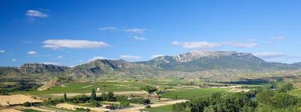 Vineyards in Haro, La Rioja, Spain. View on the vineyards of the Rioja Alta wine region near Haro, La Rioja, Spain royalty free stock images