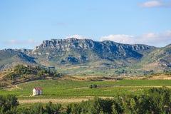 Vineyards in Haro, La Rioja, Spain. View on the vineyards of the Rioja Alta wine region near Haro, La Rioja, Spain stock images