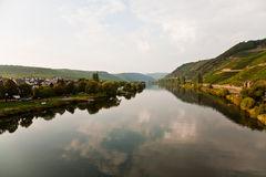 Vineyards at the hills of the romantic river Mosel edge in summe Royalty Free Stock Photos