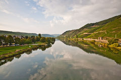 Vineyards at the hills of the romantic river Mosel edge in summe Stock Photo